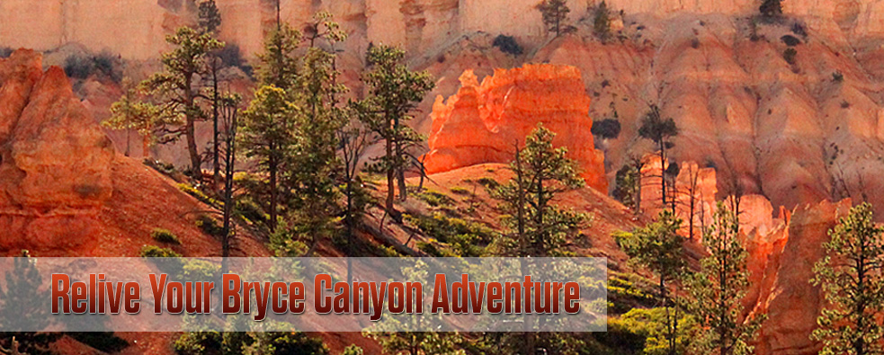Welcome To Ruby S Inn Online Store Gateway To Bryce