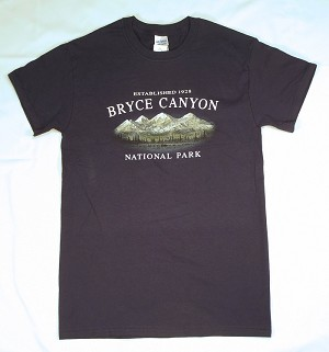 Haze Mountain T-Shirt